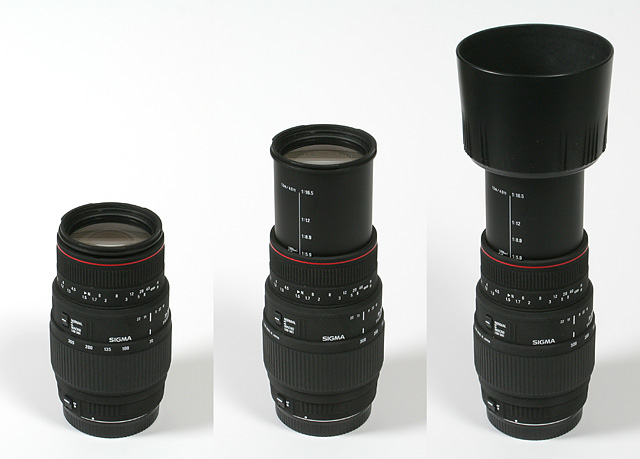 user-review-sigma-70-300mm-nikon-telephoto-macro